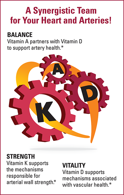 A Synergistic Team for Your Heart and Arteries! Vitamin A partners with Vitamin D to support artery health. BALANCE • STRENGTH • VITALITY